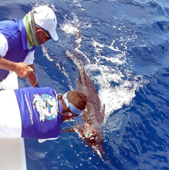 Fishing Report January & February 2015