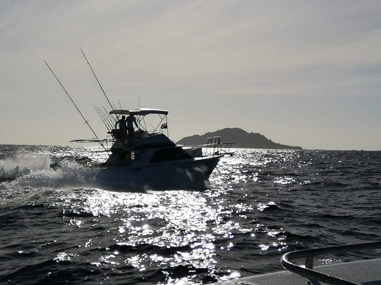 Jan 2019 Fishing Report