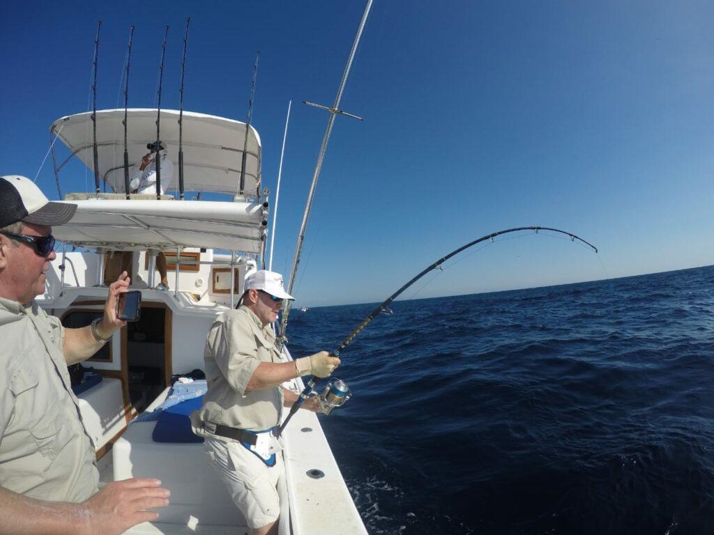 bent fishing pole reeling in a panama fish