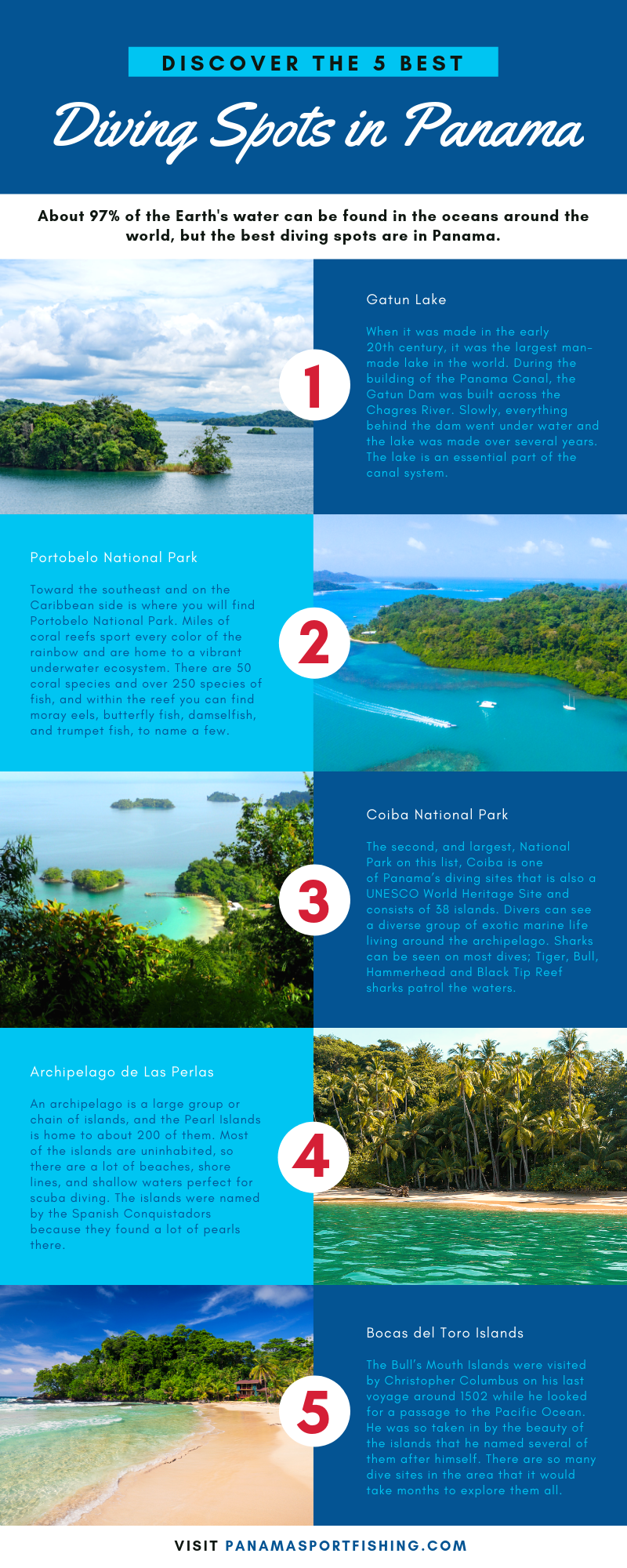 Discover the 5 Best Diving Spots in Panama infographic