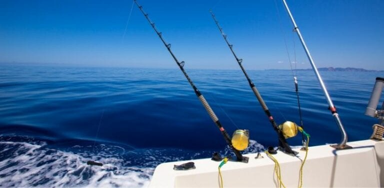 5 Fun Panama Fishing Charters in 2020