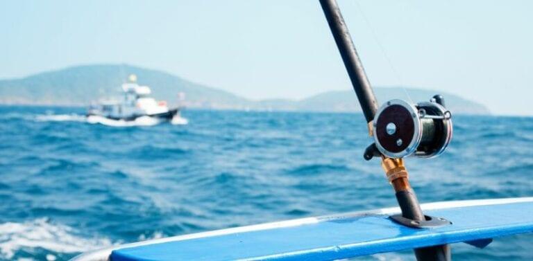 Things to Do on Isla Boca Brava