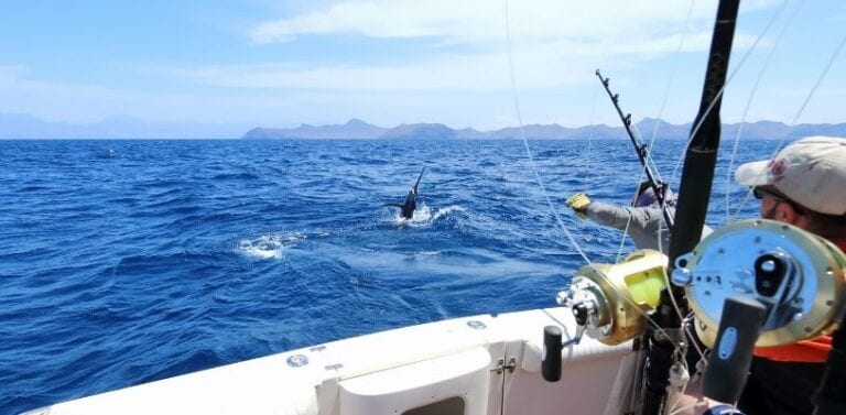 Common Misconceptions About Fishing