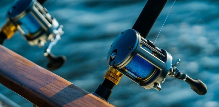 Top Reasons to Teach Your Kids to Fish in Panama