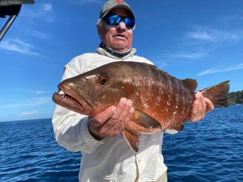 Club Náutico de Panamá - Otras capturas